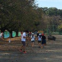 10月1日(火)朝のボランティア一緒に落ち葉掃き